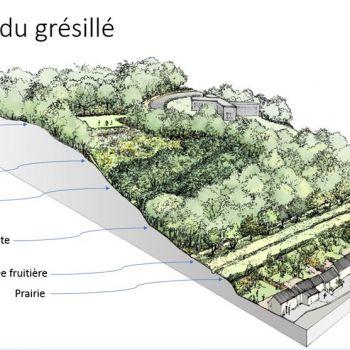 Forêt de Grésillé © Landscape.U.Need